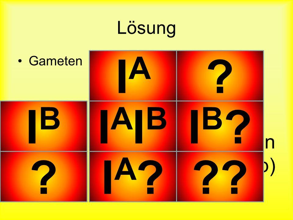 Lösung Gameten Befruchtete Eizellen (Genotyp) IAIA ? ? IBIB IAIBIAIB IB?IB? IA?IA???
