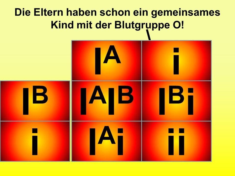 Übung: Welche Phänotypen erwarten Sie bei der folgenden Kreuzung? (Verhältnis) A B ZUSATZ: Die Eltern haben schon ein gemeinsames Kind mit der Blutgru