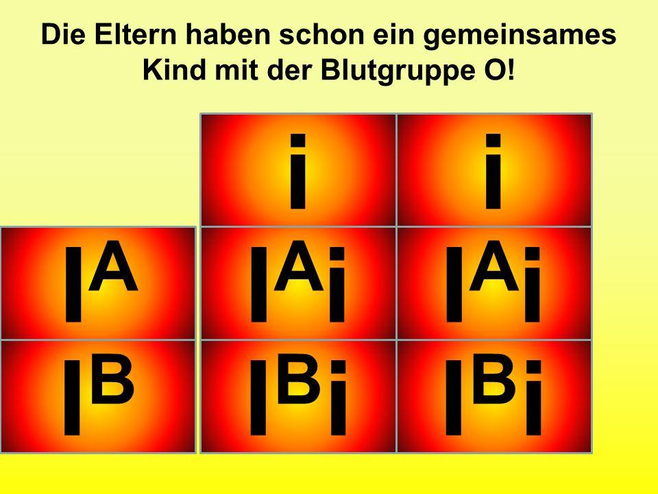 Übung: Welche Phänotypen erwarten Sie bei der folgenden Kreuzung? (Verhältnis) O AB