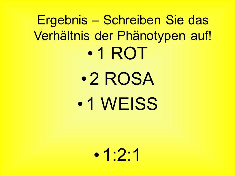 Ergebnis – Schreiben Sie das Verhältnis der Phänotypen auf! Eizellen Pollen WR W R WW WRRR W R