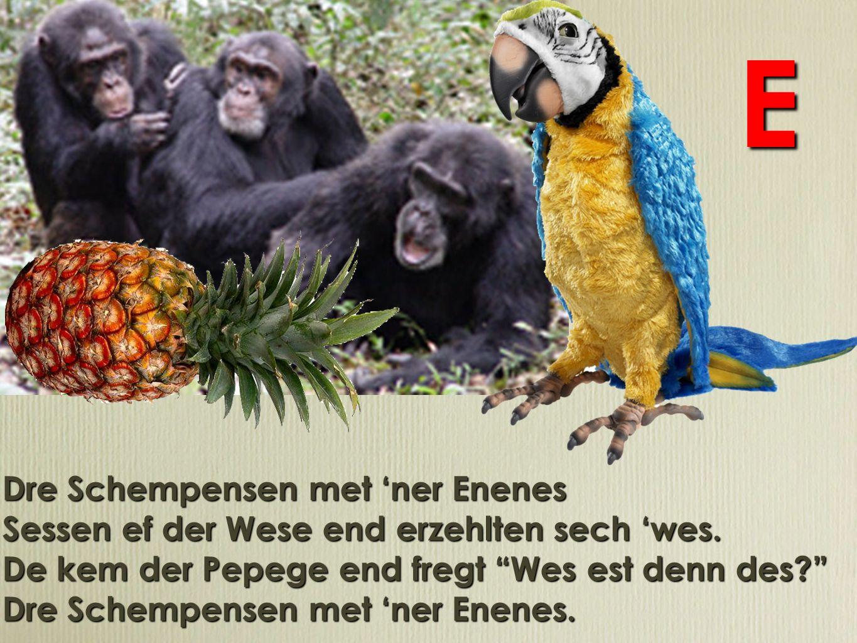 Drei Schimpansen mit ner Ananas Sassen auf der Wiese und erzählten sich was.