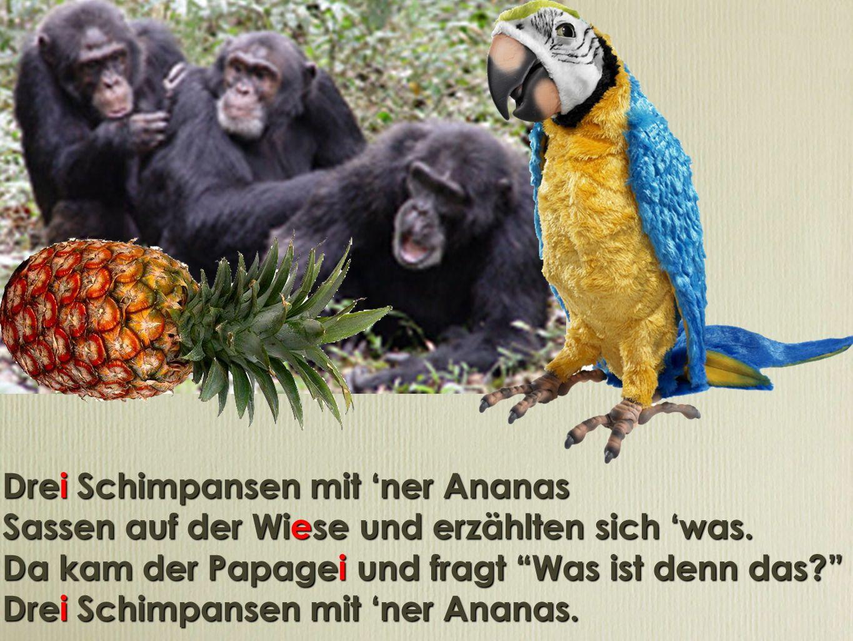 Drei Schimpansen mit ner Ananas Sassen auf der Wiese und erzählten sich was. Da kam der Papagei und fragt Was ist denn das? Drei Schimpansen mit ner A