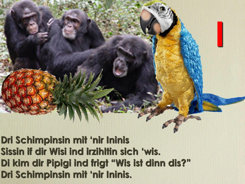 Dro Schomponson mot nor Ononos Sosson of dor Woso ond orzohlton soch wos.