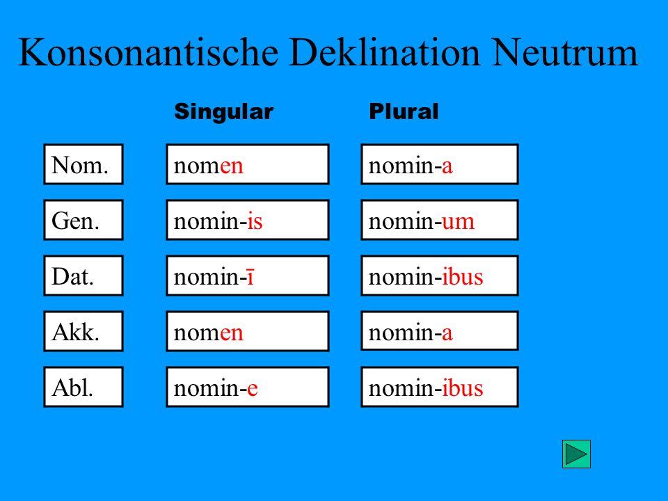 Konsonantische Deklination Neutrum Nom. nomennomin-a Gen. Dat. Akk. Abl. nomin-is nomin-ī nomen nomin-e nomin-um nomin-ibus nomin-a nomin-ibus Singula