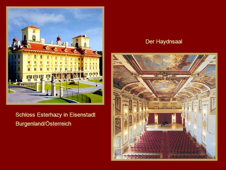 Haydn wurde (1761) schnell eine als Vizekapellmeister der Familie Esterházy angeboten, einer der wohlhabendsten und wichtigsten in der Donaumonarchie.