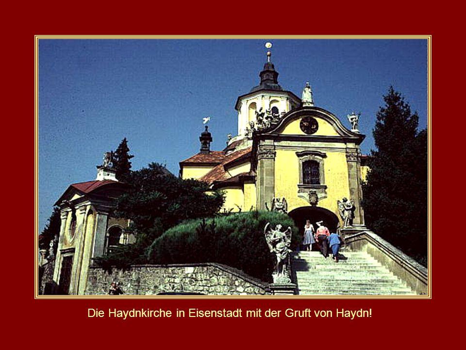 Schloss Esterhazy in Eisenstadt Burgenland/Österreich Der Haydnsaal