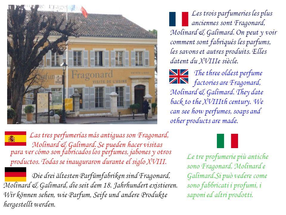 Die drei ältesten Parfümfabriken sind Fragonard, Les trois parfumeries les plus anciennes sont Fragonard, Molinard & Galimard.
