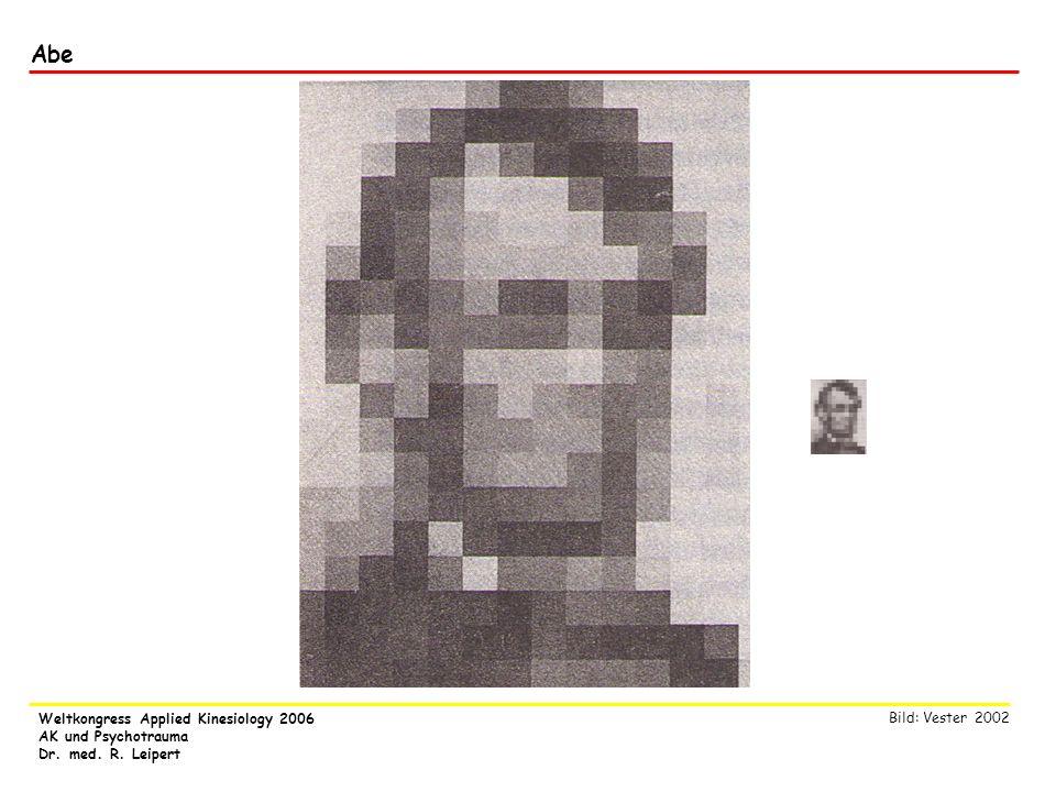 Weltkongress Applied Kinesiology 2006 AK und Psychotrauma Dr. med. R. Leipert Abe Bild: Vester 2002