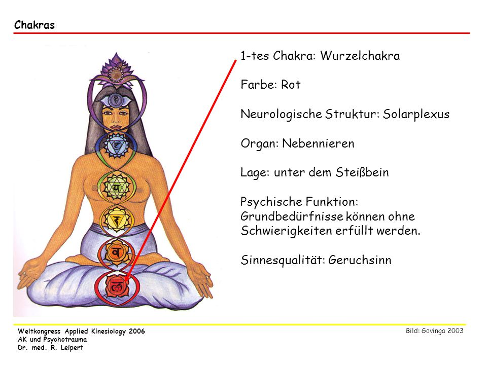 Weltkongress Applied Kinesiology 2006 AK und Psychotrauma Dr. med. R. Leipert Chakras 1-tes Chakra: Wurzelchakra Farbe: Rot Neurologische Struktur: So