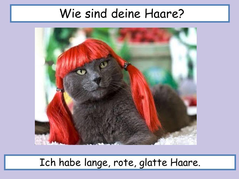 Ich habe lange, rote, glatte Haare. Wie sind deine Haare?