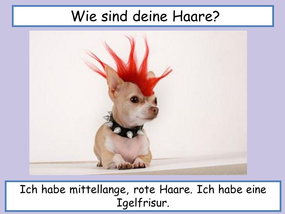 Ich habe mittellange, rote Haare. Ich habe eine Igelfrisur. Wie sind deine Haare?