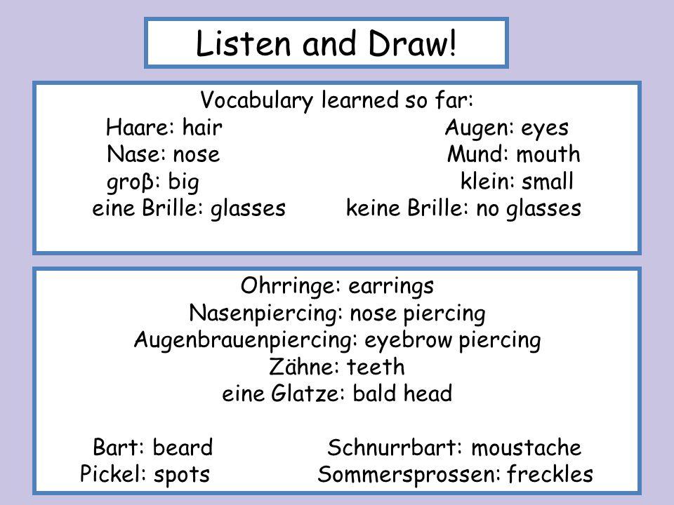 Vocabulary learned so far: Haare: hair Augen: eyes Nase: nose Mund: mouth groβ: big klein: small eine Brille: glasses keine Brille: no glasses Listen