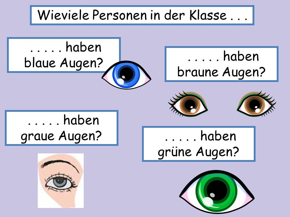 Schreibt die Ergebnisse: z.B. Sechs Personen in der Klasse haben braune Augen...