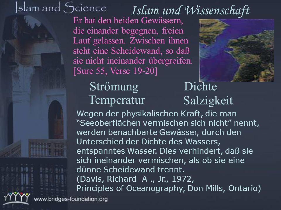 Wen ALLAH aber rechtleiten will, dem weitet Er die Brust für den Islam; und wen Er in die Irre gehen lassen will, dem macht Er die Brust eng und bedrü