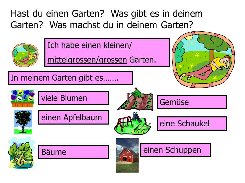 Hast du einen Garten? Was gibt es in deinem Garten? Was machst du in deinem Garten? Ich habe einen kleinen/ mittelgrossen/grossen Garten. In meinem Ga