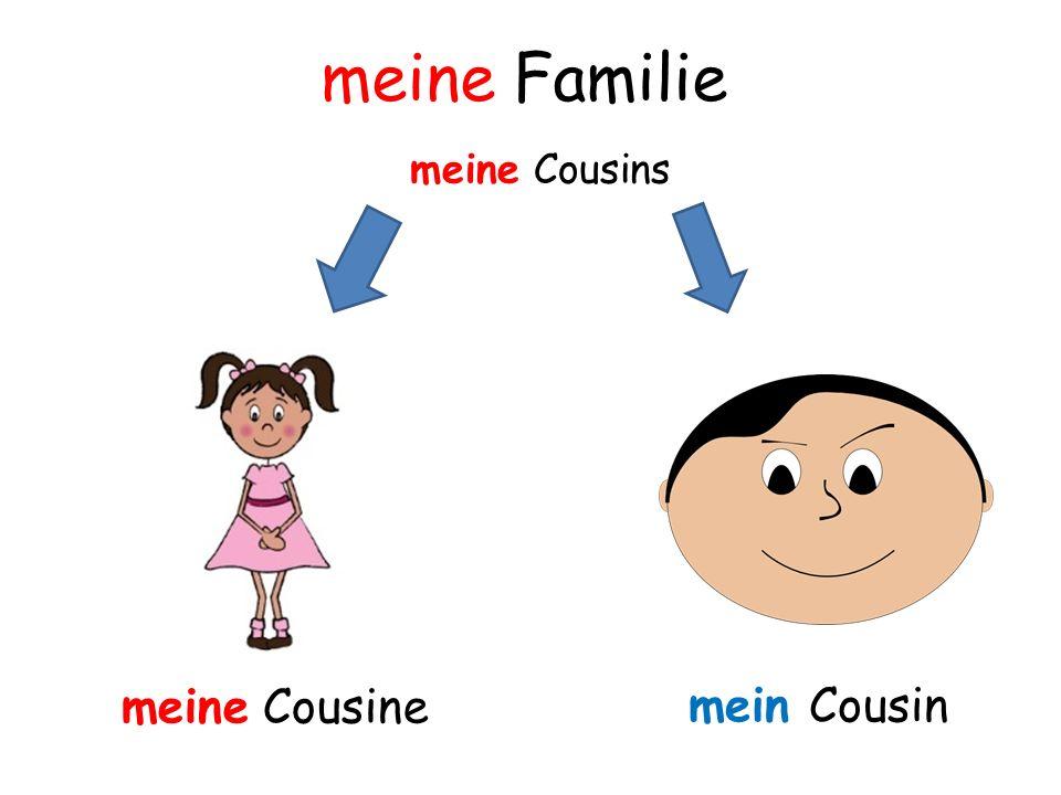 meine Cousine mein Cousin meine Cousins meine Familie