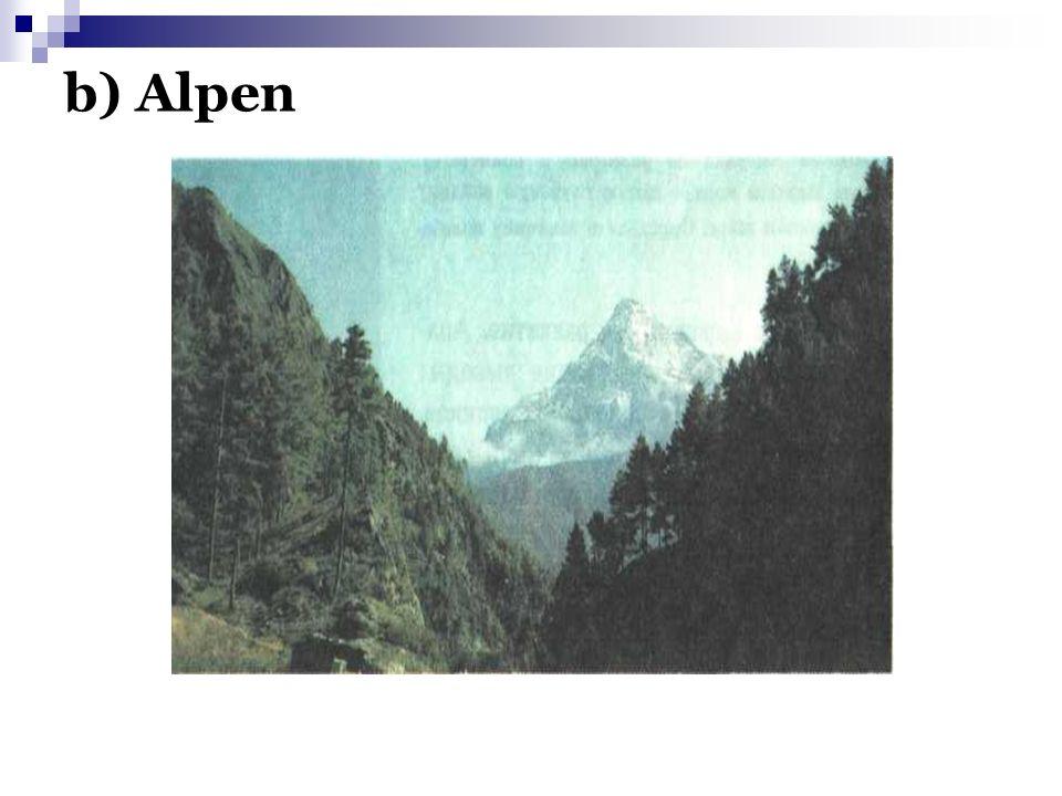 b) Alpen