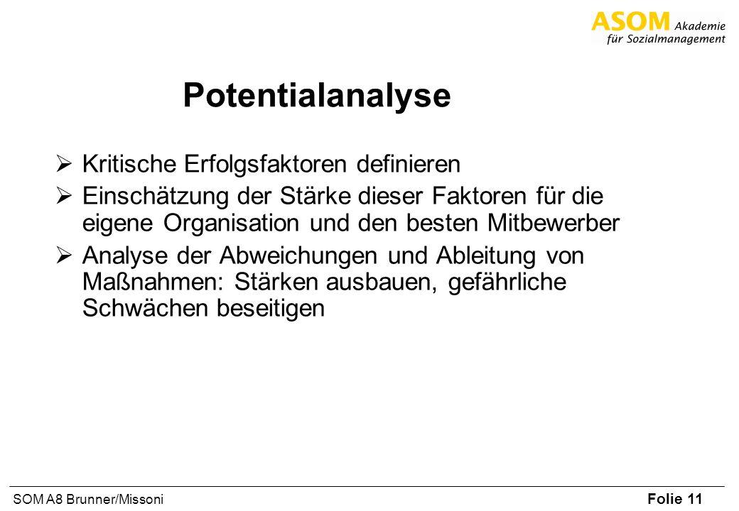 Folie 11 SOM A8 Brunner/Missoni Potentialanalyse Kritische Erfolgsfaktoren definieren Einschätzung der Stärke dieser Faktoren für die eigene Organisat