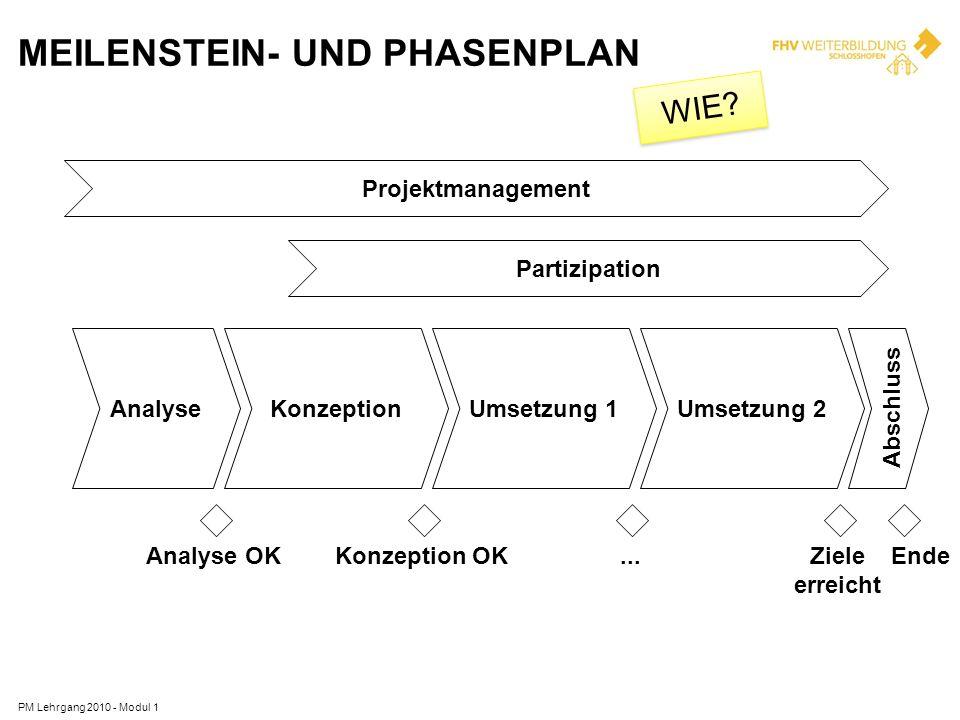 MEILENSTEIN- UND PHASENPLAN PM Lehrgang 2010 - Modul 1 Projektmanagement Partizipation AnalyseKonzeptionUmsetzung 1Umsetzung 2 Abschluss Analyse OKKon