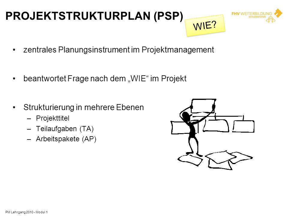 PROJEKTSTRUKTURPLAN (PSP) PM Lehrgang 2010 - Modul 1 zentrales Planungsinstrument im Projektmanagement beantwortet Frage nach dem WIE im Projekt Struk
