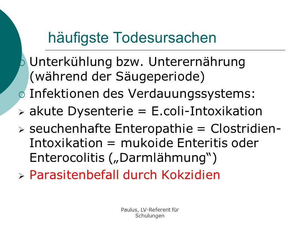 Paulus, LV-Referent für Schulungen Stabilisierung der normalen Darmflora Besiedelung des Darms mit Milchsäurebakterien Aufnahme von nährstoffreichem pelletiertem Futter Ansteigen des pH-Wertes im Darm (=weniger sauer) Verdrängen der Milchsäurebakterien durch E.