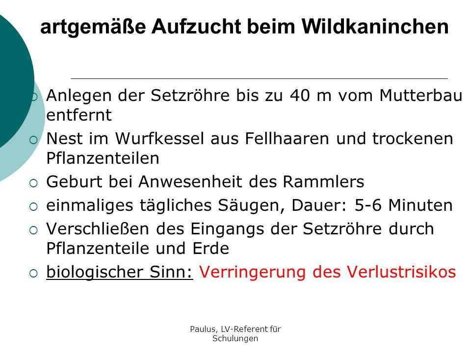 Paulus, LV-Referent für Schulungen artgemäße Aufzucht beim Wildkaninchen Ende der Säugeperiode mit der 4.