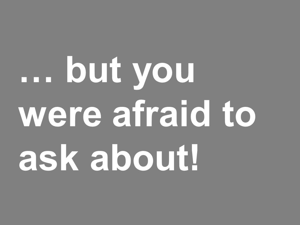 … but you were afraid to ask about!