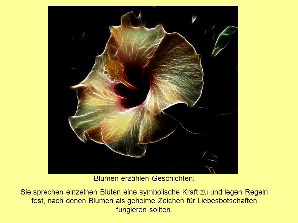 Blumen erzählen Geschichten: Sie sprechen einzelnen Blüten eine symbolische Kraft zu und legen Regeln fest, nach denen Blumen als geheime Zeichen für