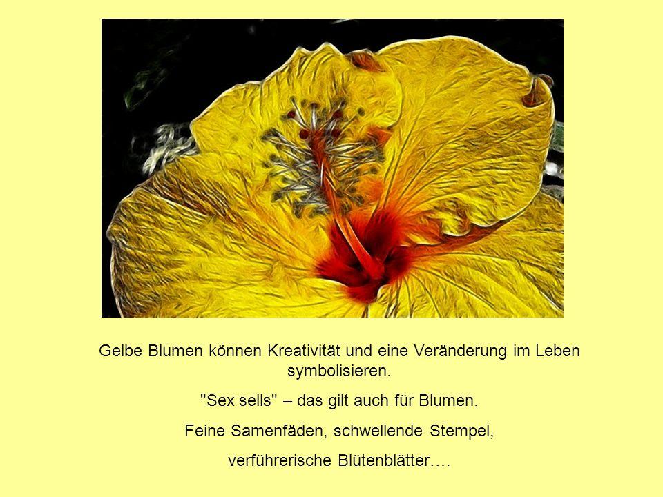 Gelbe Blumen können Kreativität und eine Veränderung im Leben symbolisieren.