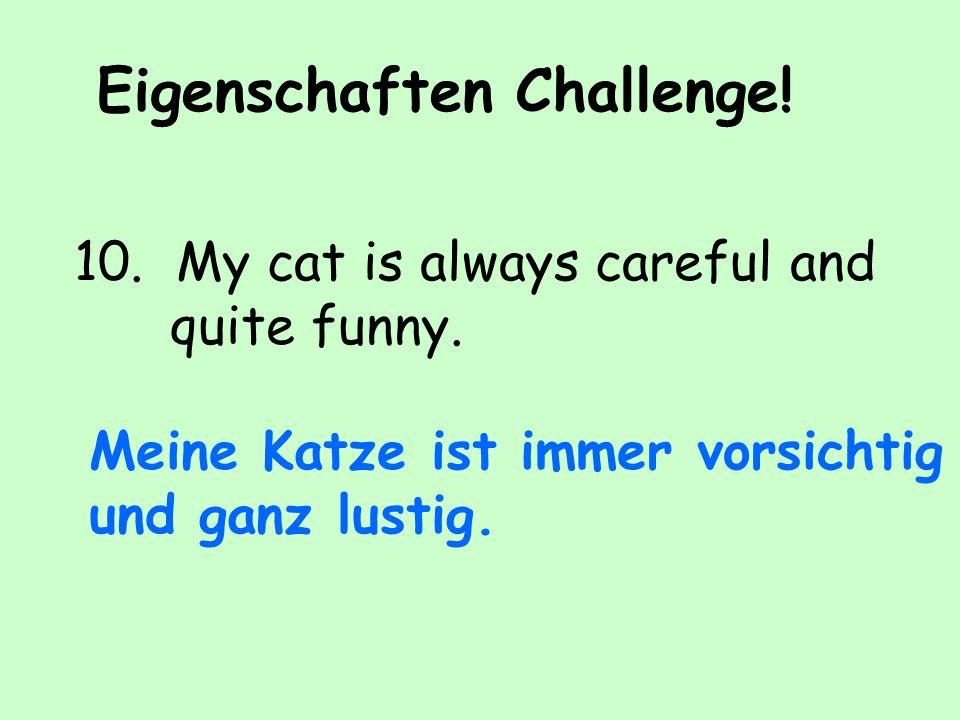 Eigenschaften Challenge.10. My cat is always careful and quite funny.