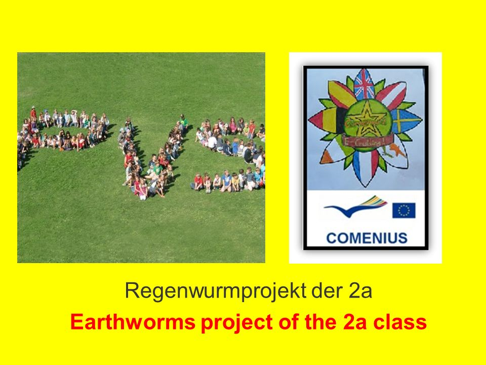 Regenwurmprojekt der 2a Earthworms project of the 2a class