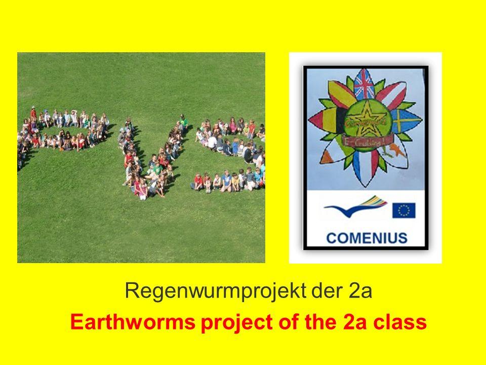 Wir sind die 2a! Herzlich willkommen! We are the 2a! Welcome!