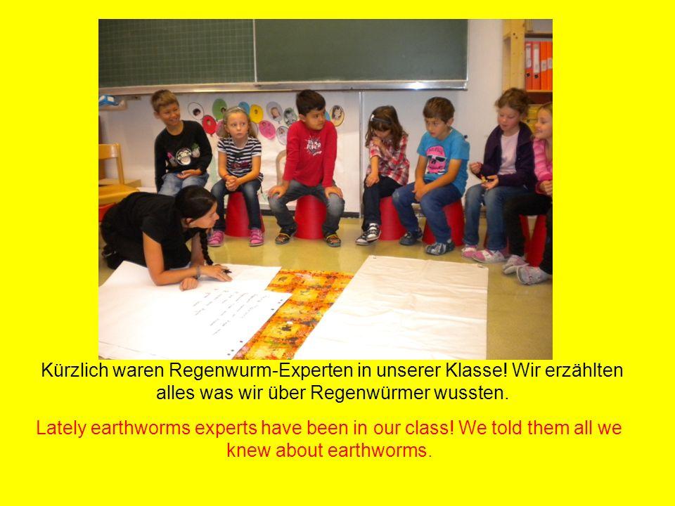 Kürzlich waren Regenwurm-Experten in unserer Klasse.