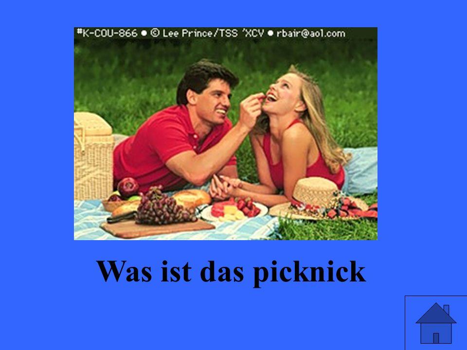Was ist das picknick