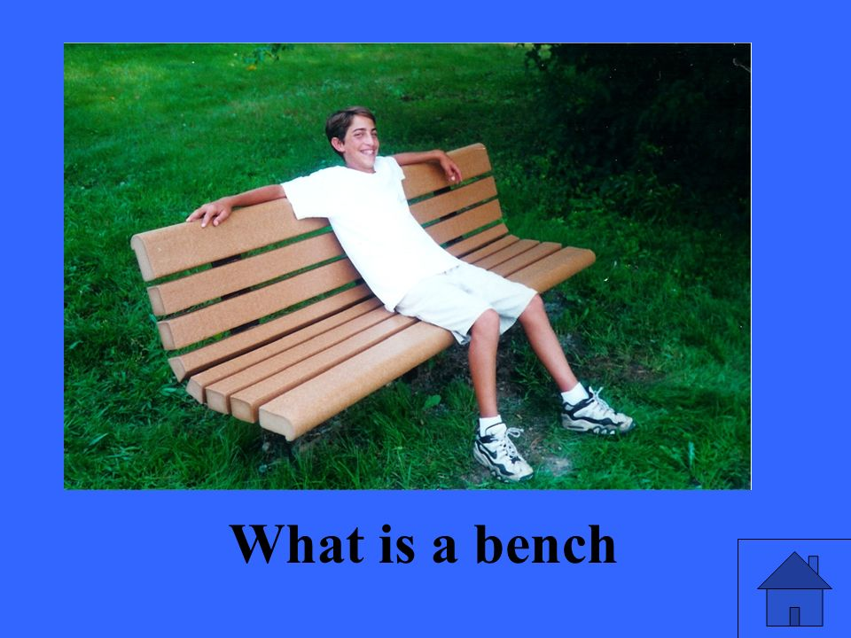 What is a bench