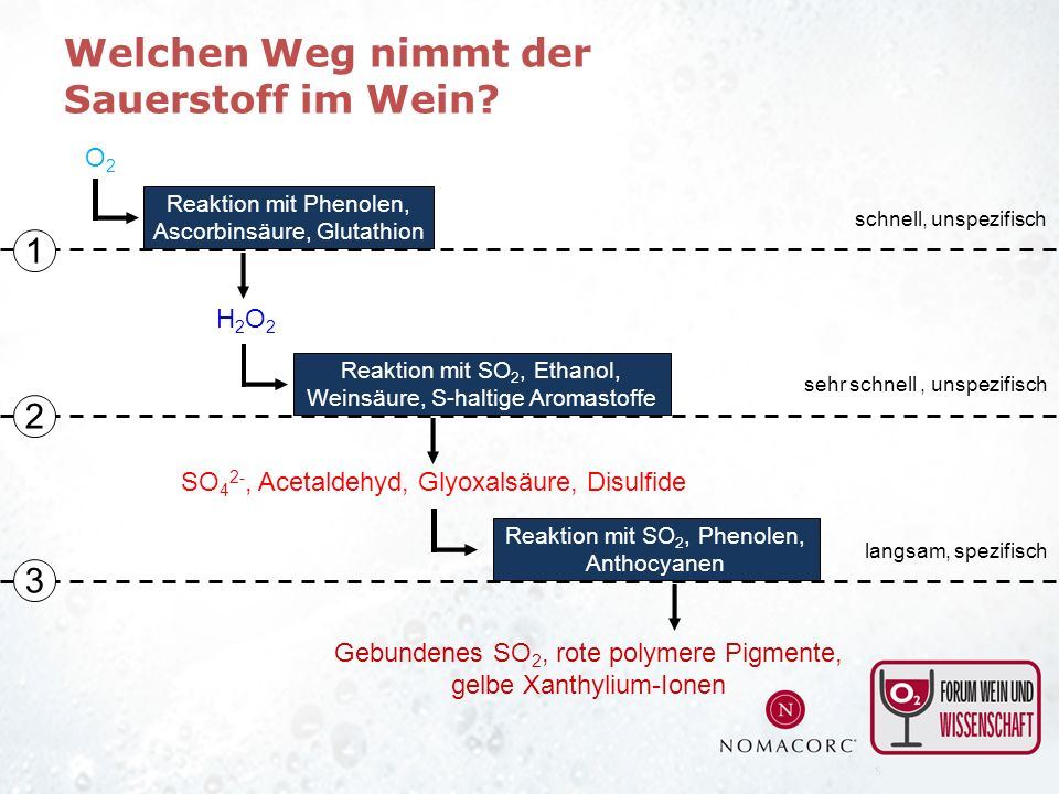 Reaktion mit Phenolen, Ascorbinsäure, Glutathion O2O2 Reaktion mit SO 2, Ethanol, Weinsäure, S-haltige Aromastoffe SO 4 2-, Acetaldehyd, Glyoxalsäure,