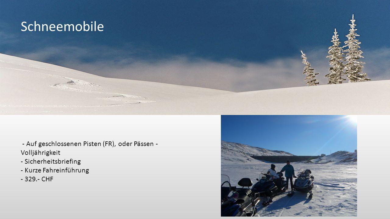 Schneemobile - Auf geschlossenen Pisten (FR), oder Pässen - Volljährigkeit - Sicherheitsbriefing - Kurze Fahreinführung - 329.- CHF
