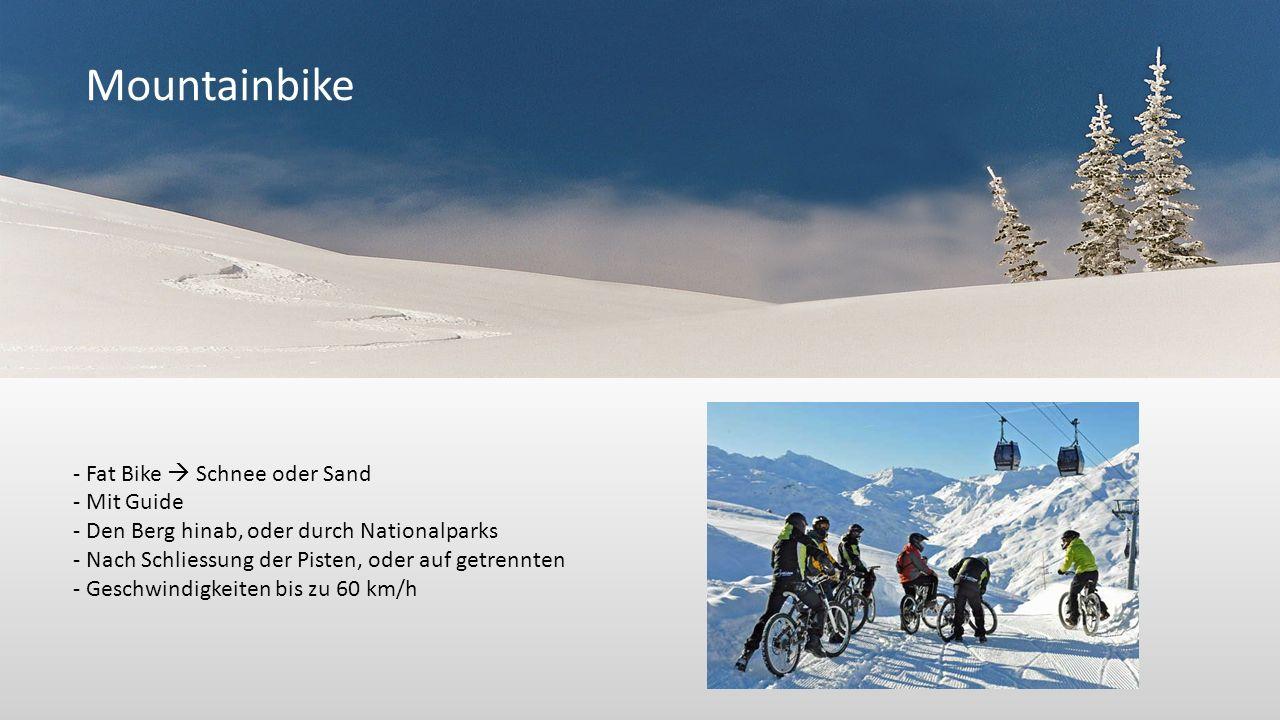 Mountainbike - Fat Bike Schnee oder Sand - Mit Guide - Den Berg hinab, oder durch Nationalparks - Nach Schliessung der Pisten, oder auf getrennten - Geschwindigkeiten bis zu 60 km/h