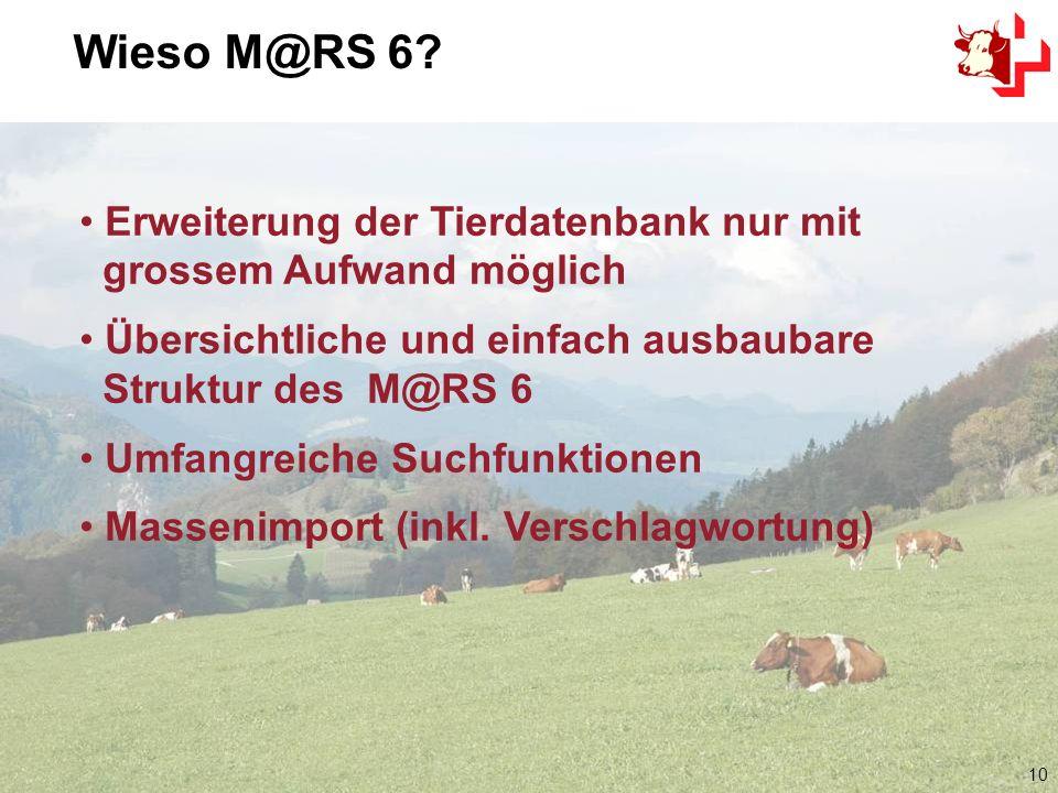 10 Erweiterung der Tierdatenbank nur mit grossem Aufwand möglich Übersichtliche und einfach ausbaubare Struktur des M@RS 6 Umfangreiche Suchfunktionen Massenimport (inkl.
