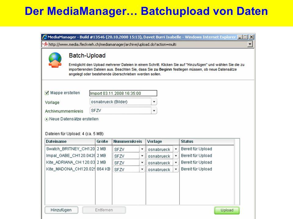 23 Der MediaManager… Batchupload von Daten