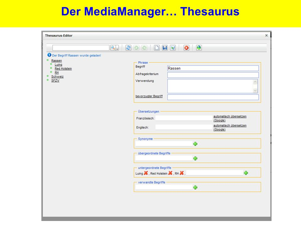 25 Der MediaManager… Thesaurus
