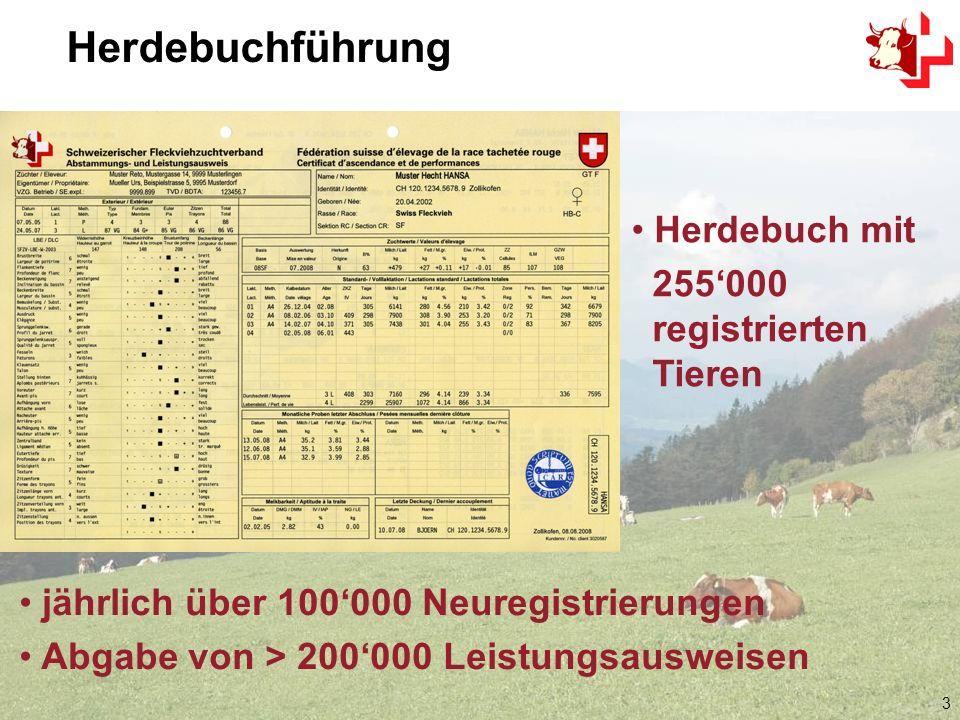 3 Herdebuch mit 255000 registrierten Tieren Herdebuchführung jährlich über 100000 Neuregistrierungen Abgabe von > 200000 Leistungsausweisen