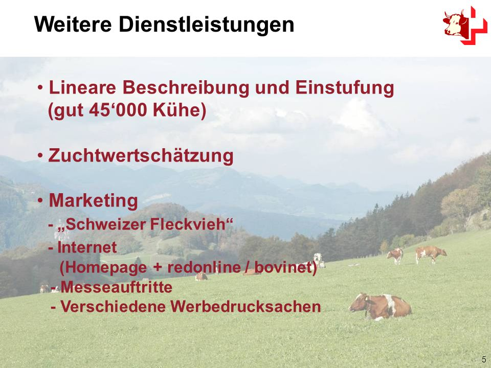5 Lineare Beschreibung und Einstufung (gut 45000 Kühe) Zuchtwertschätzung Marketing - Schweizer Fleckvieh - Internet (Homepage + redonline / bovinet) - Messeauftritte - Verschiedene Werbedrucksachen Weitere Dienstleistungen