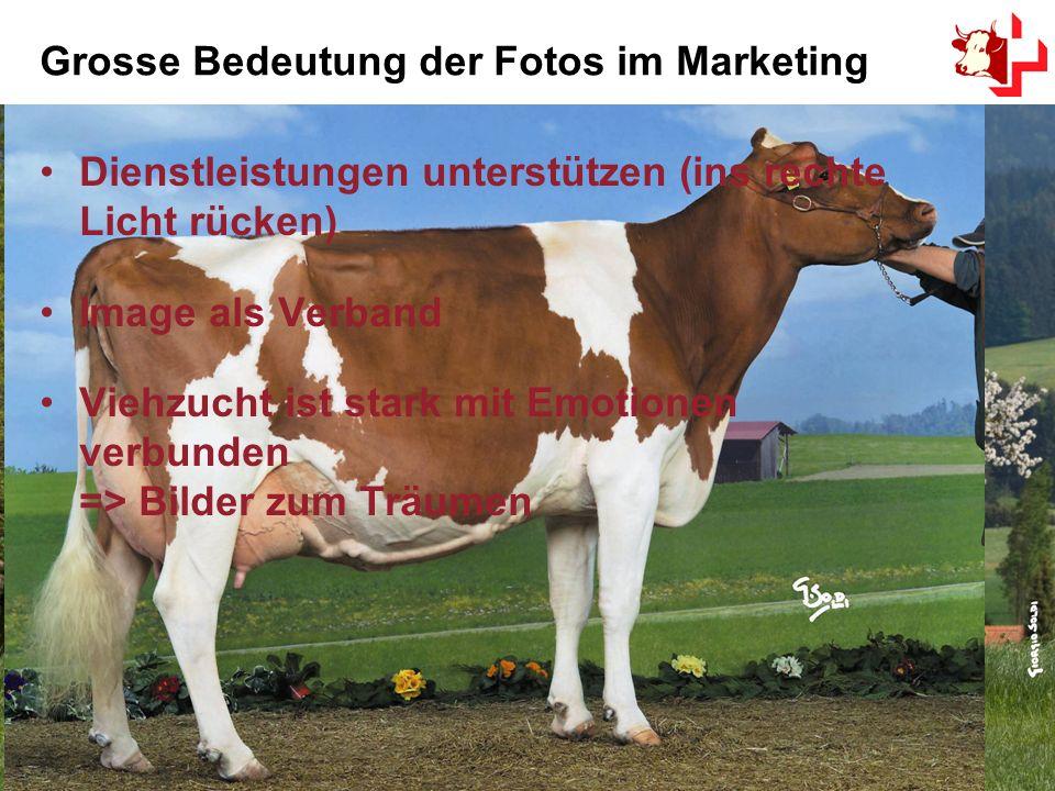 6 Grosse Bedeutung der Fotos im Marketing Dienstleistungen unterstützen (ins rechte Licht rücken) Image als Verband Viehzucht ist stark mit Emotionen verbunden => Bilder zum Träumen
