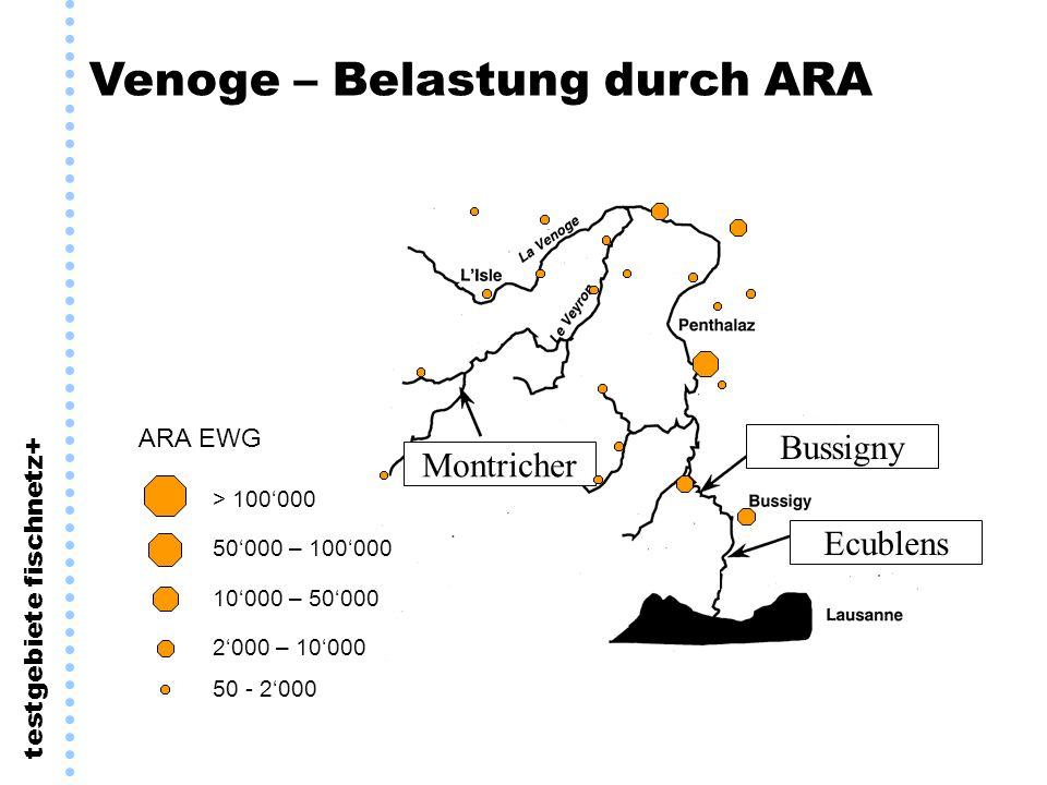 testgebiete fischnetz+ Venoge – Belastung durch ARA Bussigny Montricher Ecublens 50000 – 100000 10000 – 50000 2000 – 10000 > 100000 50 - 2000 ARA EWG
