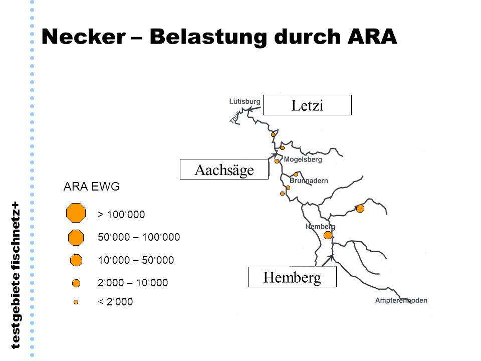 testgebiete fischnetz+ Necker – Belastung durch ARA Letzi Aachsäge Hemberg 50000 – 100000 10000 – 50000 2000 – 10000 > 100000 < 2000 ARA EWG