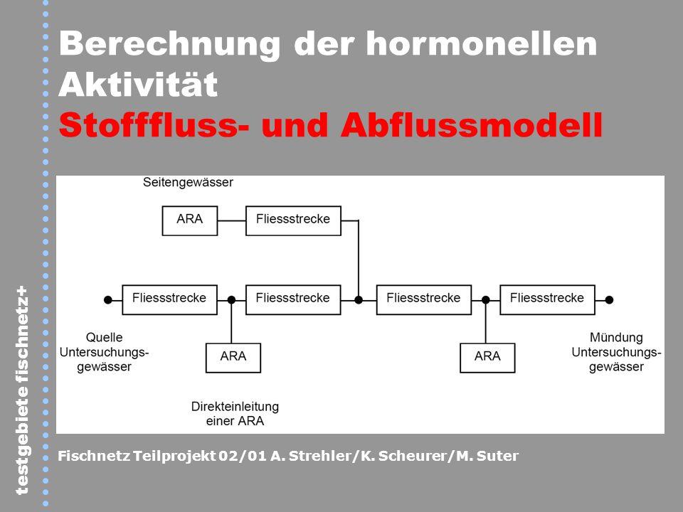 testgebiete fischnetz+ Berechnung der hormonellen Aktivität Stofffluss- und Abflussmodell Fischnetz Teilprojekt 02/01 A. Strehler/K. Scheurer/M. Suter