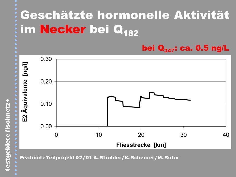 testgebiete fischnetz+ Geschätzte hormonelle Aktivität im Necker bei Q 182 bei Q 347 : ca. 0.5 ng/L Fischnetz Teilprojekt 02/01 A. Strehler/K. Scheure