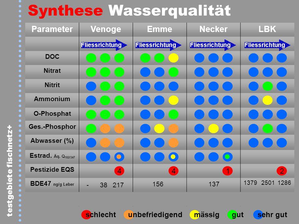 ParameterVenogeEmmeNeckerLBK DOC Nitrat Nitrit Ammonium O-Phosphat Ges.-Phosphor Abwasser (%) Estrad. Äq. Q 182/347 Pestizide EQS BDE47 ng/g Leber - 3