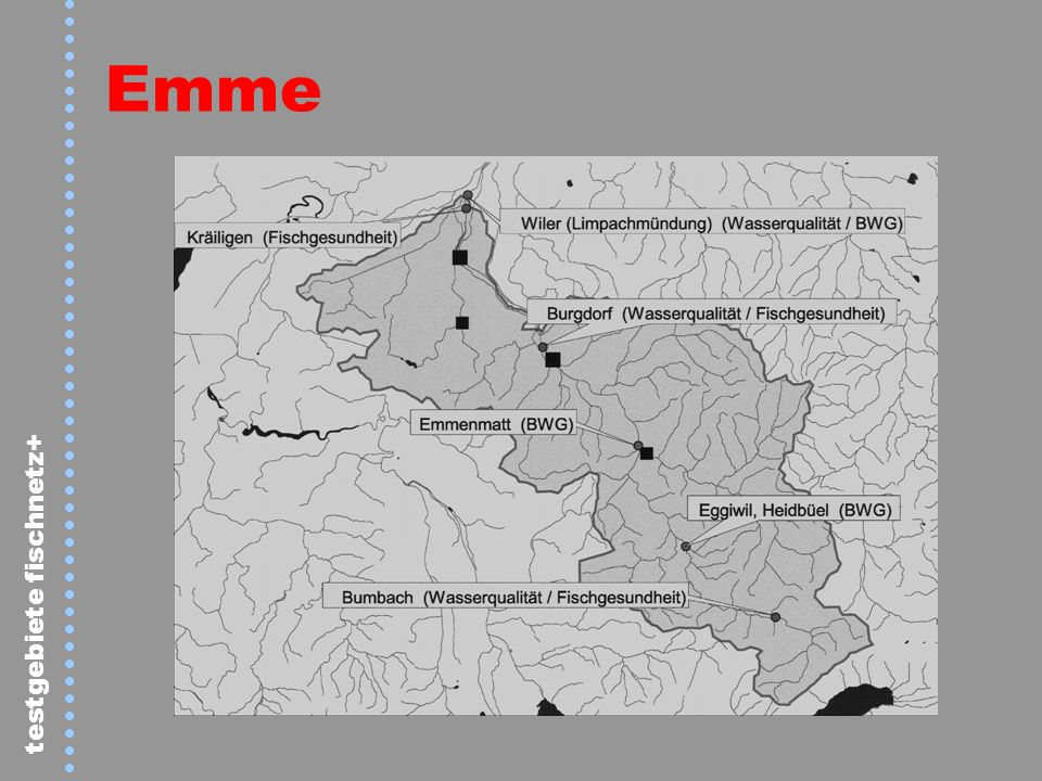 testgebiete fischnetz+ Liechtensteiner Binnenkanal – Belastung durch ARA Triesen Schaan Balzers > 100000 50000 – 100000 10000 – 50000 < 2000 ARA EWG
